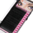 Blink BL Lashes Mink Tray Lashes B,C,D,J curl For Individual Eyelash Extensions