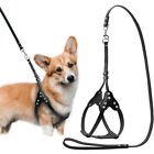 Soft Leather Step-in Dog Harness & Leash Rhinestone for Small Medium Large Dogs