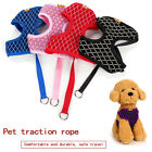 Lovely Pet dogs breathable mesh with flash drill nylon chest back Accessories