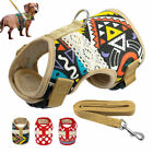 Small Dog Harness and Leads Mesh Padded Pet Puppy Vest for Yorkie French Bulldog