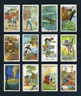 GALLAHER Cigarette Cards - ROBINSON CRUSOE 1928 - Man Friday etc. Select A Card