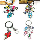 Fairy Tail  Mental Key Chain Key Ring Cosplay Gift