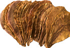 Catappa Leaves Indian Almond Leaves 8+ Inches, Water Modifier, Discus, Betta USA