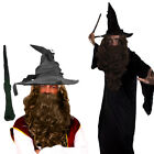 WIZARD CLOAK WITH BROWN WIG AND BEARD SET COSTUME MAGICAL FILM PROF FANCY DRESS