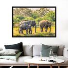 3d Elephant 564 Fake Framed Poster Home Decor Print Painting Unique Art Summer
