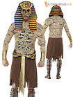 Adult Mens Ancient Egypt Zombie Pharaoh Gladiator Halloween Fancy Dress Costume