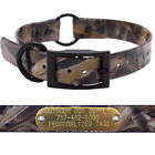 """1"""" Mossy Oak Grass Camo Center Ring Dog Collar with Custom Name Tag ID Plate"""