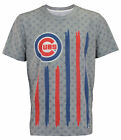 Forever Collectibles MLB Men's Chicago Cubs Big Logo Flag Tee on Ebay