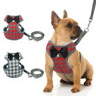 Mesh Padded Small Dog Harness & Leads Pet Puppy Cat Vest Yorkie French Bulldog