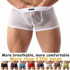Underpants Men  Sexy Elastic Lingerie Sleepwear Underwear Boxer See Through Mesh