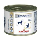 Royal Canin Veterinary Diet Dog & Cat – Recovery Wet Food 12 x 195g cans