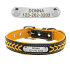 Orange Soft Braided Personalised Dog Collar with Nameplate Leather Padded XS-XL