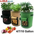 4/7/10 Gallon Potato Planting Bag Pot Planter Vegetable Container Growing Garden