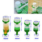 Birds Parrot Cockatiel Canary Pigeon Waterer/Feeder Automatic Seeding Water Cage