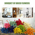 50pcs Dried Flowers Bouquet Photo Props Handmade Wedding Party Xmas Home Decor