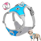Strong No Pull Pet Dog Harness Front Leading Reflective Padded Vest Jack Russell