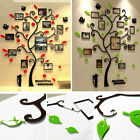Family Tree Wall Decal Stickers Large Acrylic Frame Art Diy Mural Home Decor