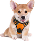 Rabbitgoo Dog Harness, No-Pull Adjustable Pet Harness with 2 Leash Clips S L XL