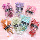 Natural Dried Bouquets Gypsophila Mini Real Flower Plant Stems Home Decor Diy Uk