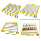 42/56 Egg Incubator Chicken Hatcher Automatic Rotating Temperature Control