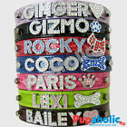 Внешний вид - Croc Dog Cat Pet Personalized Collar - XS, S, M, L, XL