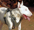 NEW Handmade Spiked Leather Dog Harness PitBull AmStaff
