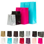 Luxury Paper Gift Bags Paper Carrier Bag Party Bag 19x24.5x11cm