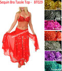 SEQUIN BEADED BRA TASSEL TOP with FRINGES BELLY DANCE COSTUME HALLOWEEN SILVER