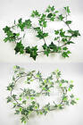 172cm Wired Artificial Greenery Plant Ivy Garland / Vine in Green or Variegated