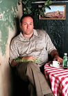 JAMES GANDOLFINI -THE SOPRANOS PROFESSIONAL PHOTOGRAPH POSTER - 12x18in