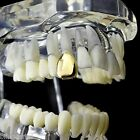 14k Gold Plated Single Cap Grillz Plain K9 Canine Teeth Tooth Grill w Mold Kit