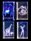 Crystal Engraved 3D LASER BLOCK; Dragon, Wolf, Hearts, Buddha etc. Perfect Gift