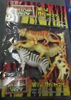 New Awesome Wild Animals/Insects/Dinosaurs Pack figurine Toy :children/kids 5+