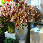 "80cm 31.5"" WHITE RED SPOTS ARTIFICIAL REAL TOUCH  SILK PU COATING ORCHID FLOWER"