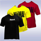UNIVERSAL NUTRITION ICONIC ANIMAL T-SHIRT YELLOW RED BLACK tee pak authentic