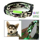 Dog Pet Collar Camouflage LED Light Safety Glow Adjustable Nylon Camo Band NEW