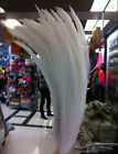 5/10/20 PCS beautiful rare silver chicken tail feathers  40-75 cm / 16-30 inches
