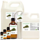 Thyme Essential Oil 100% Pure Free Shipping Many Sizes to Choose from