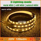 5630 120leds/m Warm/Neutral/Cool White Dimmable IP68 LED Strip Light +Power Cord