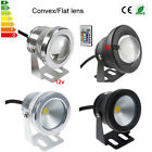 10W Underwater LED Flood Wash Pool Light IP68 Fountain Pond Spot Lamp DC12V