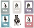 Staffordshire Bull Terrier Notebook by Curiosity Crafts NEW* Choice of Colours