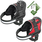 Padded Extreme Car Walking Dog Harness Waterproof Reflective Comfy Active Sport