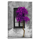 Panoramic Images Tree in Front of Window Purple Pop Color Pop | Canvas Art Print