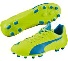 PUMA Japan EVO SPEED 4.4 HG Football Soccer Shoes 2016 New Yellow 103271
