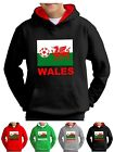 Wales Football Sweat shirt Kids Hoodie Euro World Cup Welsh Flag Hoody hooded