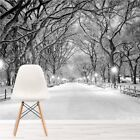 Winter Trees White Forest Wall Mural Wallpaper WS-42890