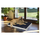 ORTHOPAEDIC MATTRESS WITH ANTI-DECUBITUS PROPERTIES BT BLUE CARPET FOR DOGS