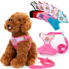 Soft Mesh Dog Puppy Harness and Leash Set for Small Dogs Yorkie Chihuahua 3 Size