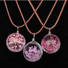 Fashion Jewelry Dandelion Flower Necklace Crystal Pendant Leather Chain Charm