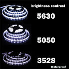 5M SMD RGB 5050/3528/5630 300LEDs Cool/Warm White Waterproof Strip Light